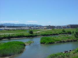 初夏の藻川